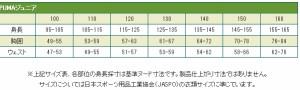 PUMA【プーマ】 ジュニアゲームパンツ 光沢なし(ポリエステル) -サッカーウェア-ウェア-