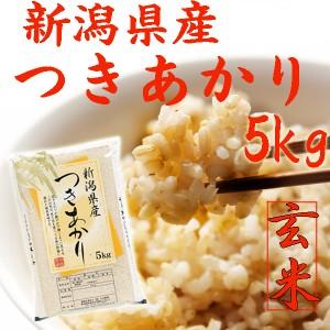 新米 5kg【玄米 5kg】新潟県産 つきあかり 玄米 5キロ(5キロ×1袋)《新米 玄米5kg 令和2年玄米 2020 新潟県産玄米 お米 玄米5kg 安い