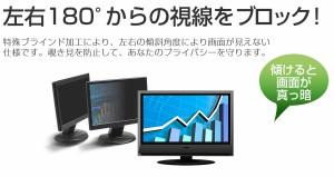 メール便送料無料/Lenovo ThinkVision T2224d[21.5インチ]機種で使える のぞき見防止 プライバシー セキュリティー OAフィルター