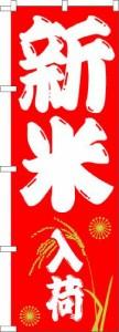 新米 10kg きぬむすめ キヌムスメ 30年岡山産きぬむすめ【5kg×2袋】 送料無料 北海道・沖縄は別途756円 米 10キロ 送料無料