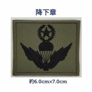 韓国 軍隊 降下章 ワッペン 韓流 グッズ lf001-20