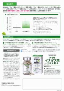 常盤薬品 トキワ イチョウ葉エキス粒 + 90粒 12個 機能性表示食品