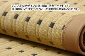 【純国産 掛川織 い草ラグカーペット 『DXスウィート』 (裏:不織布)191×191cm】