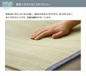 【純国産 やわらかい草の敷きパッド 『デニム 素肌草 汗取P』 約88×200cm】