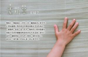 【純国産 やわらかい草の敷きパッド 『デニム 素肌草ベビーキルト』 約70×120cm (中綿入り)】