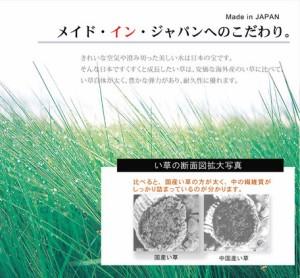 【い草ラグ 国産 ラグ カーペット リーフ柄 『Fナチュレ』191×191cm】