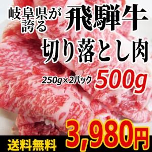 【送料無料・訳あり】飛騨牛切り落とし肉250g×2パック(500g)◆普段使いに便利なきりおとし肉をお値打ちにご提供 牛丼