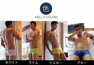 ボクサー 男性下着 メンズ セクシーインナー  シンプル 無地 ストレッチコットン  ローライズ 無地パンツ 4色 DY03