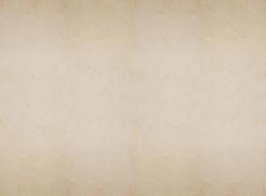 輸入壁紙 貼ってはがせる壁紙 MR PERSWALL【9巾】ミスターパースウォール Captured Reality バーチ合板 Birch Plywood 木目 板 男前 塩系