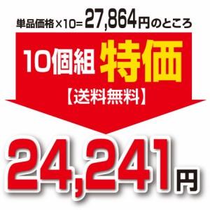 【新登場・送料無料】百種発酵源ペースト(3g×20包)(10個組)