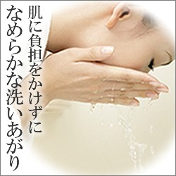 【お得なセット】 資生堂 ナビジョン クレンジングフォーム + ハイドロキノン石けんミニ 【敏感肌/ニキビ対策】[ 洗顔フォーム・低刺激・