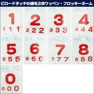 ワッペン 『フロッキーネーム(数字)赤色 5』 寺井