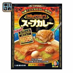 明治 マジックスパイス スープカレー 307g 20個入