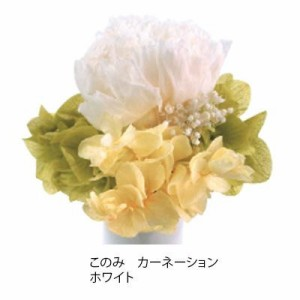 プリザーブドフラワー(ミニ仏花) このみ カーネーション ホワイト C21700