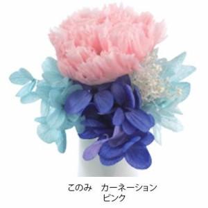 プリザーブドフラワー(ミニ仏花) このみ カーネーション ピンク C21720