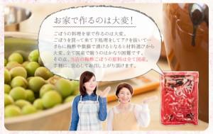 梅酢ごぼう/80g×4袋セット/国産素材/漬物/おかず/サッパリ/出荷目安:1〜2週間程度