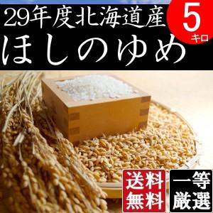 米 5キロ 送料無料 安い ほしのゆめ 北海道産 お米 5kg 安い 白米 北海道米 検査一等米