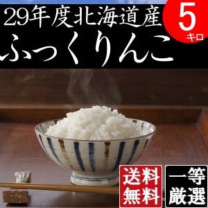 米 5キロ 送料無料 安い ふっくりんこ 北海道産 お米 5kg 安い 白米 北海道米 検査一等米