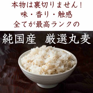 雑穀 丸麦 500g 厳選国産 定番サイズ 送料無料
