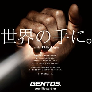 GENTOS(ジェントス) LED ヘッドライト 【明るさ100ルーメン/実用点灯8時間/耐塵/防水】 オーヴァ VA-01D