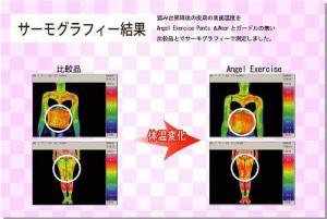Angel Styles エンジェルエクササイズパンツ AEP-001  M Angel Styles(エンジェルスタイル)