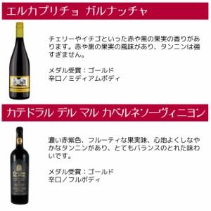 ソムリエ厳選 スペイン金賞ワイン6本セット(750ml×6本)【送料無料】