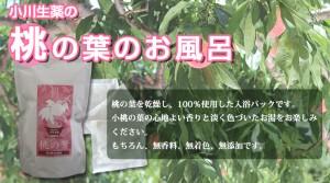 【送料無料】小川生薬 桃の葉のお風呂 20g×10包 3個セット