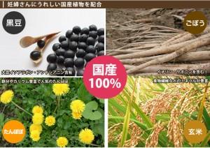 国産タンポポ根配合 小川生薬の国産たんぽぽブレンド茶(マタニティブレンド茶) 5個セット 5g×30袋  さらにもう1個プレゼント