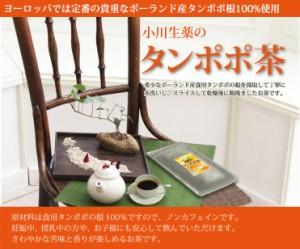 たんぽぽ茶〈タンポポ茶〉 2g×36袋 テトラバッグ使用  DM便