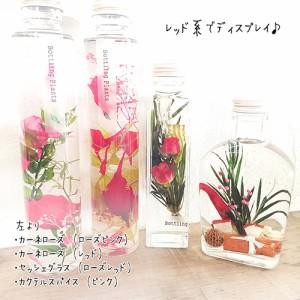 松村工芸 ハーバリウム BP-18103 セッシェグラス 2.ローズピンク  母の日 プレゼント ギフト 誕生日 女性 フラワー 観葉植物 植物標本