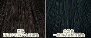 【Lサイズ】  話題の高級ヘアピース! 人毛100% 人工地肌付き おしゃれヘアピース L