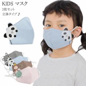 送料無料 立体 マスク 2枚組 キッズマスク 子供用 マスク 洗える 子供マスク マスク 花粉対策 インフルエンザ対策 花粉対策 マスク
