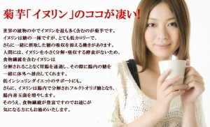 菊芋チップ茶 50g メール便 茶 イヌリン/菊芋チップス/きくいも/キクイモ/野菜茶/ギフト/プレゼント