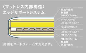 最新型2モーターリクライニング機構内蔵マットレス RP-1000DLX シングルサイズ シングル フランスベッド リクライニング 送料無料