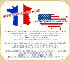 プルーン 南フランス産 アジャンのプルーン 約220g×5パック 常温 送料無料