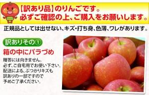 早割 りんご リンゴ 送料無料 山形県産 訳あり早生りんご バラ詰め 約10キロ (箱込重量) 茶箱(26〜54玉前後) 常温