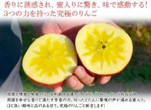 こみつ りんご 青森県産 究極の蜜入りりんご「こみつ」 6〜12玉 約2キロ ※4箱まで同一配送先に送料1口