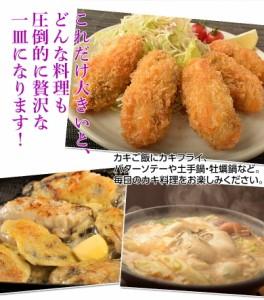 牡蠣 カキ かき 送料無料 岡山県産 邑久の牡蠣 特大3Lサイズ 約1kg 解凍後約800g 冷凍 加熱調理用