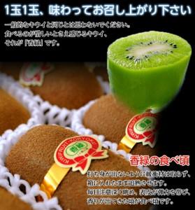 送料無料 香川県産 キウイ 香緑 化粧箱 3〜5L 約1.4kg (8〜10玉)