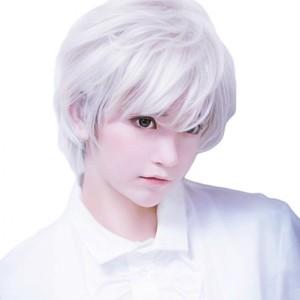 コスプレ用 ウィッグ 銀髪 白髪 ビジュアル