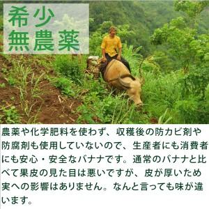 バランゴンバナナ 1kg フェアトレード 無農薬・無化学肥料・糖度28.0%・還元力+134mV
