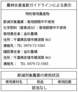 飛竜コシヒカリ白米3kg  最高品質 29年産自然栽培米(無農薬・無肥料)自家採種・固定種・放射性物質検査済