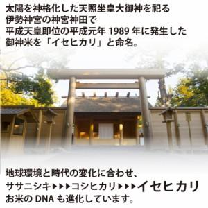 【幻の御神米 玄米5kg】29年産自然栽培(無農薬・無肥料) 放射性物質検査済