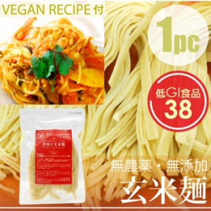 HIRYUの玄米麺 100g×1pc ヴィーガンレシピ付き! 自然栽培(無農薬・無肥料)コシヒカリ使用