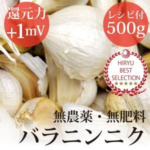にんにく バラ 500g黒ニンニクレシピ付き・自然栽培(無農薬・無肥料)・熊本県産・還元力(抗酸化力)+1mV