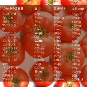 トマト 500g 千葉県産・無農薬・無化学肥料・還元力(抗酸化力)+82mV