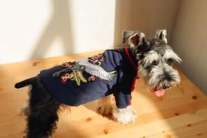 犬 防寒 春 夏 ブルゾン コットン ペット服 鶴刺繍 猫 小型犬