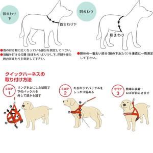 犬 ハーネス 中型犬・大型犬用 EZYDOG クイック ハーネス M