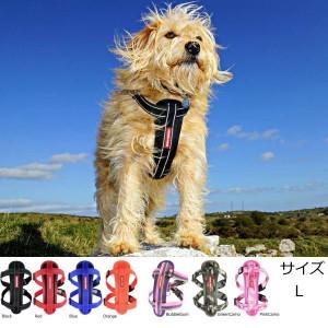 犬 ハーネス 中型犬・大型犬用 EZYDOG チェストプレート  L