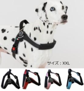 犬 ハーネス 中型犬・大型犬用 トレ・ポンティ Brio(ブリオ)M